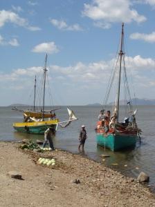 Vissersboten in Puerto Diaz